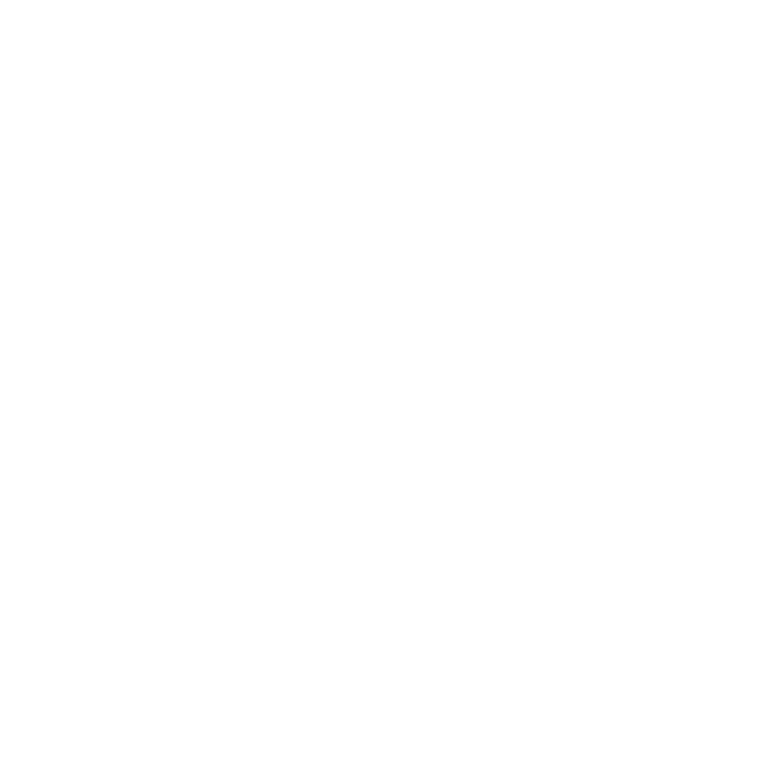 The Sporting Page Logo Negative